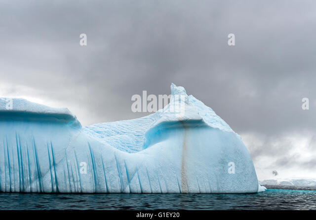 Floating blue ice and moody sky Cierva Cove Antarctic Peninsula Antarctica - Stock Image