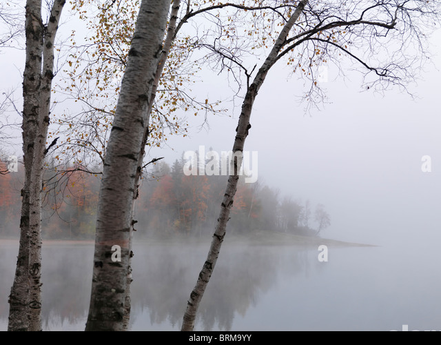 Early morning fall nature scenery of The Arrowhead Lake. Arrowhead provincial park, Ontario, Canada. - Stock Image