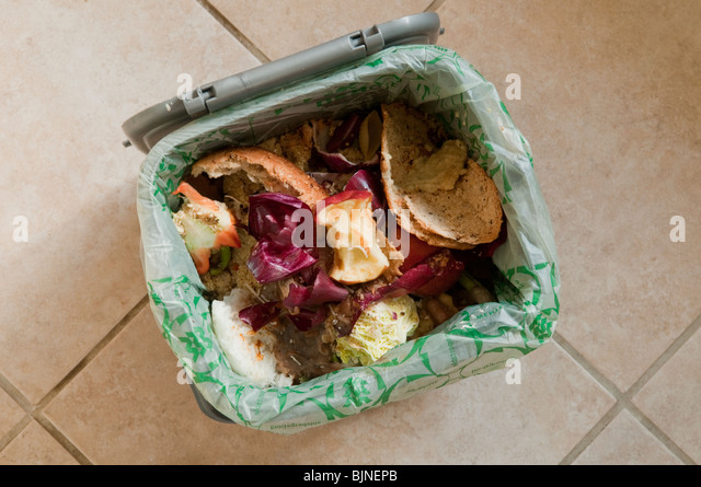 Food waste in kitchen bin - Stock Image