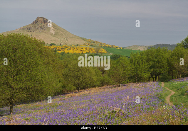 Roseberry Topping, North Yorkshire - Stock Image