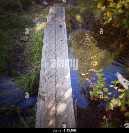 Walking the plank to get to the well water at McBride Springs campground on Mount Shasta in California. - Stock Image