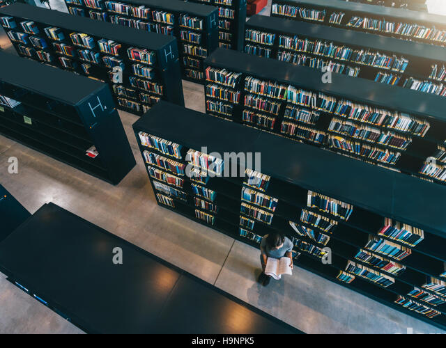 Top view of female student reading book while sitting at library bookshelf. University student studying in library. - Stock Image