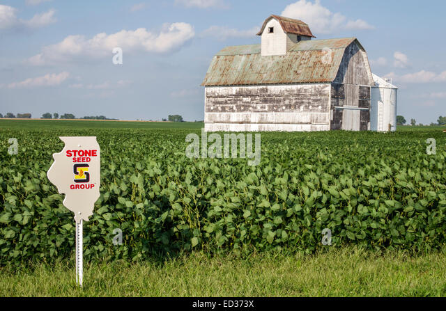 Illinois Tuscola crop barn rural agricultural agriculture farming farm harvester combine soybean seed marker sign - Stock Image