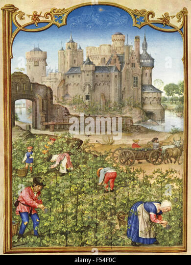 Medieval representations of the months of the year : September - Stock Image