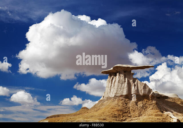 The Wings, bizarre rock formations in Bisti Badlands, New Mexico, USA - Stock Image