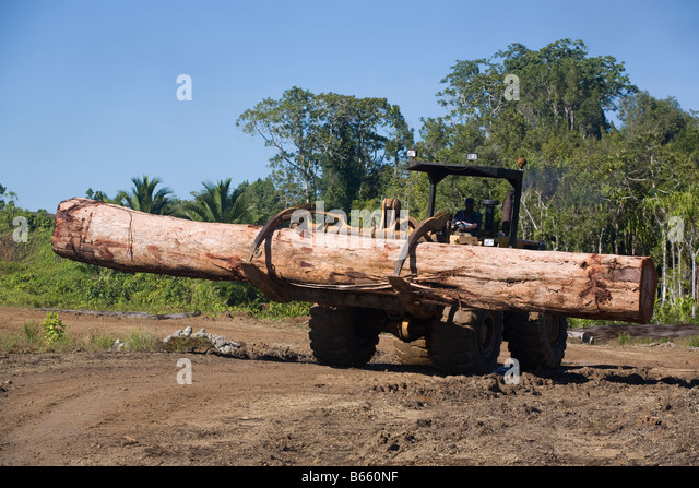 Ndrahong logging camp and pond, on Manus Island, Papua New Guinea, Tuesday 30th September 2008 - Stock Image