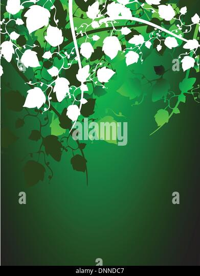 Foliage background - Stock Image