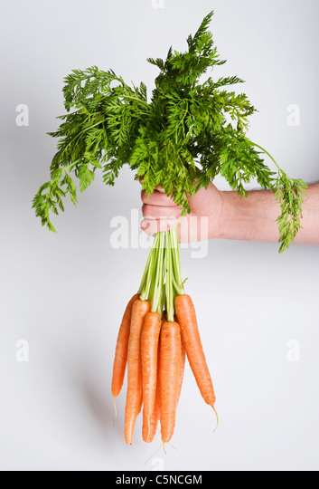 A man holding a bunch of carrots - Stock Image