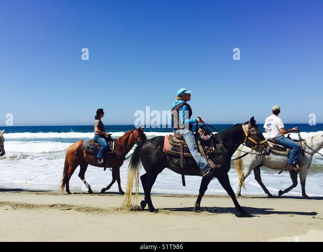 Horseback riding on beach - Stock Image