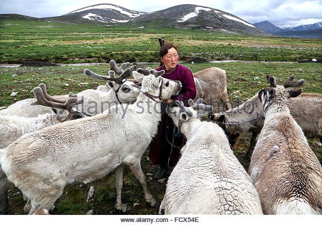 Tsaatan nomad  Mongolia - Stock Image