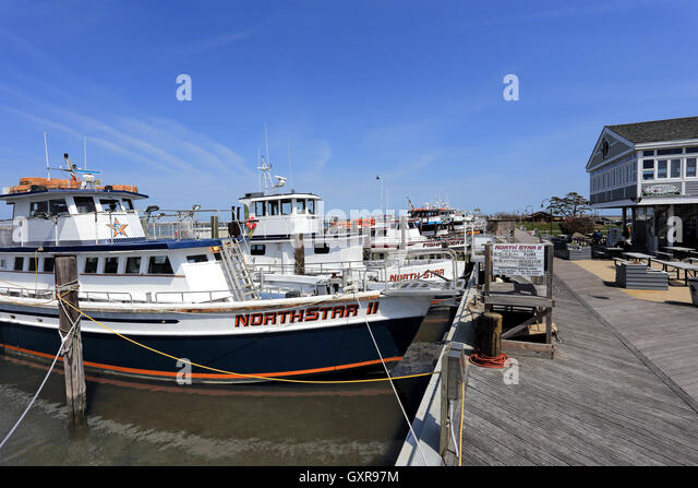 Sport fishing fleet marina stock photos sport fishing for Fishing boats nyc