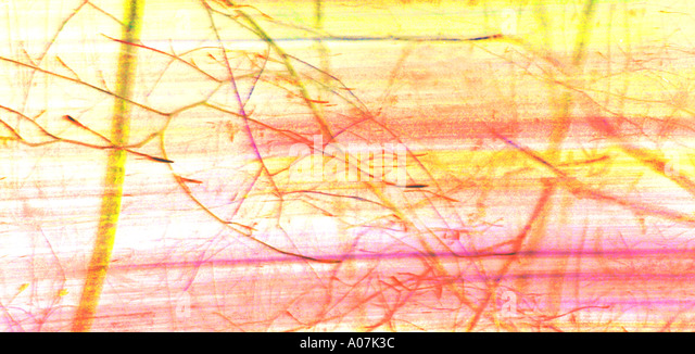 Confusion, Creativity, Horizontal, Blurred Motion, USA, Rippled, Pattern, Sunlight, Illuminated, Backgrounds, Abstract, - Stock Image