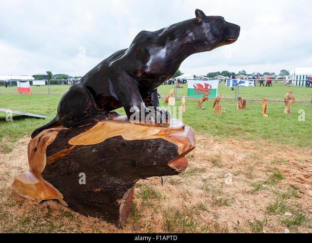 Black panther tree stock photos