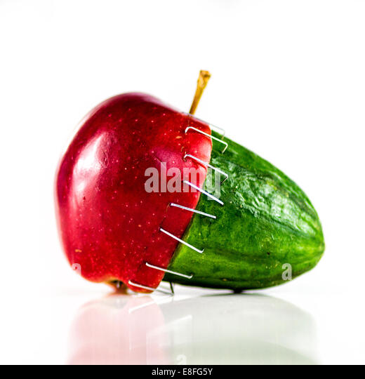 Apple and cucumber stapled together - Stock Image