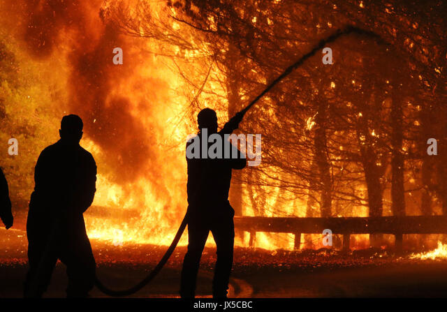 Kalamos, Greece. 14th August, 2017. A firefighter sprays water during a forest fire in the village of Kalamos Credit: - Stock Image