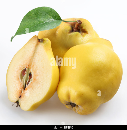 quince on a white background - Stock Image