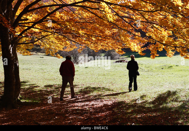 Autumn / fall colors in the Sibillini National Park,Le Marche,Italy. - Stock Image