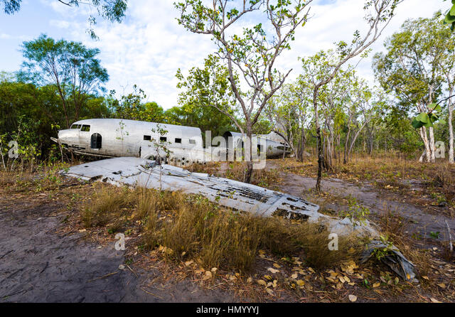 The wrecked wing and fuselage of a DC-3 in the forest after crashing during WWII. - Stock Image