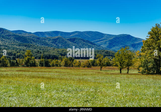Great Smokey Mountains National Park as seen from Cades Cove, a narrow valley near Townsend, Tennessee, USA. - Stock Image
