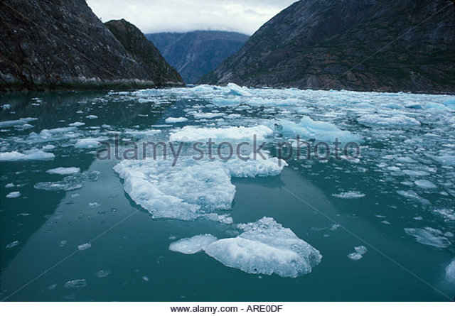 Alaska Juneau South Sawyer Glacier Tracy Arm Fjord Glacier Cruise floating ice - Stock Image