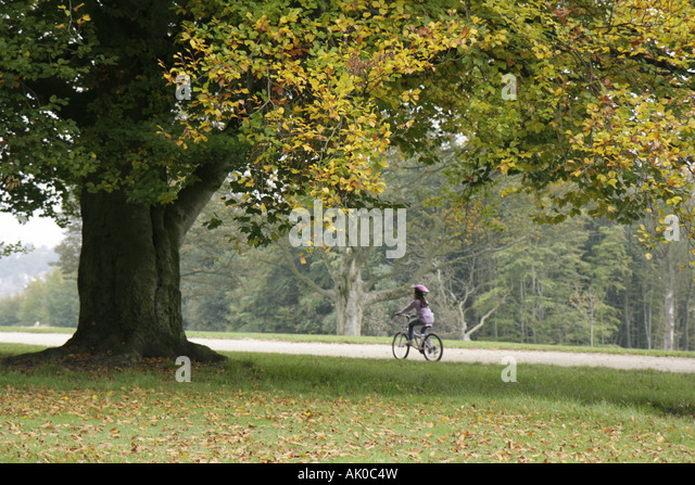 UK, England, Manchester, Heaton Park, girl, bicycle, - Stock Image