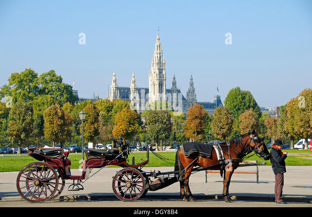 Fiaker, horse-drawn carriage with a driver in front of Vienna City Hall, Vienna, Austria, Europe - Stock Image