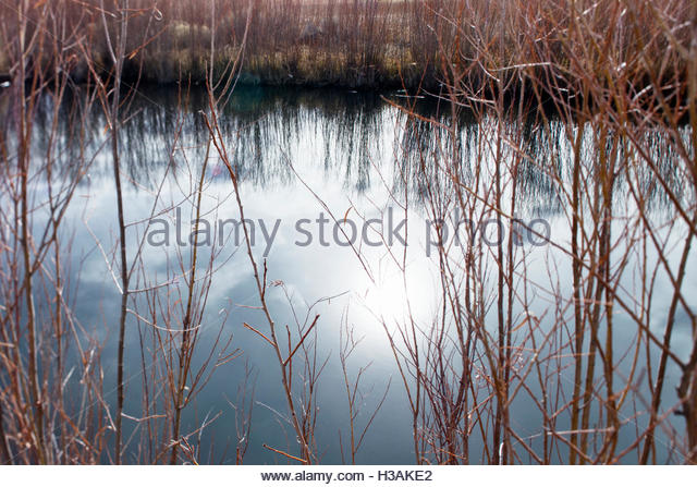river shores reflected in the water - Stock Image