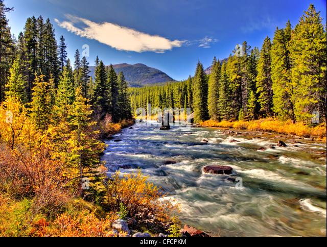 Maligne River, Jasper National Park, Alberta, Canada - Stock Image