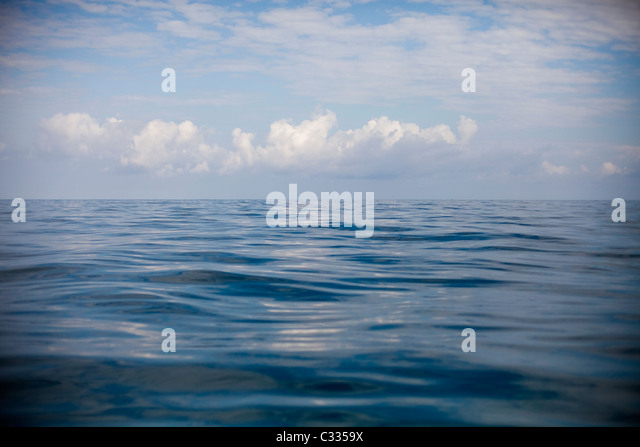 An abstract image of water. - Stock Image