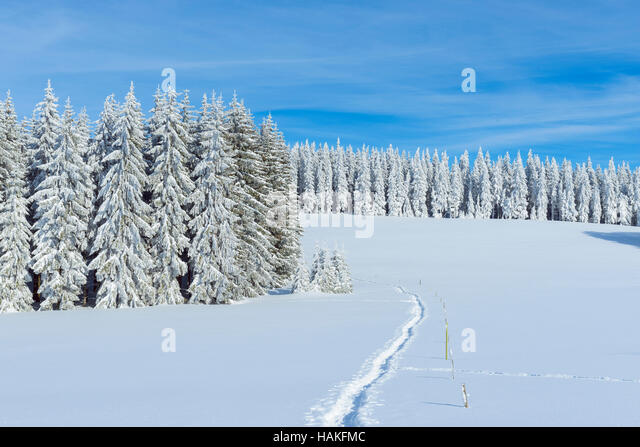 Snow Covered Winter Landscape with Snowshoe Trail, Schauinsland, Black Forest, Freiburg im Breisgau, Baden-Wurttemberg, - Stock Image