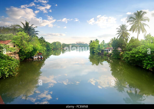Small houses on a river in junles of Sri Lanka - Stock Image