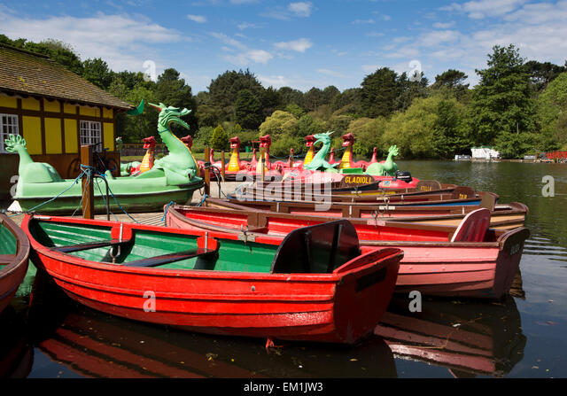 UK, England, Yorkshire, Scarborough, Peasholm Park boating lake, rowing poats and dragon pedaloes - Stock Image