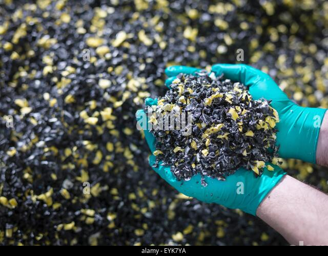 Worker holding recycled plastic in plastics factory, close up - Stock Image