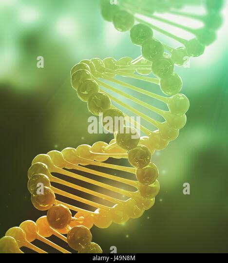 DNA strand model - genetics 3d illustration - Stock-Bilder