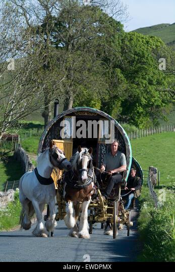 Excellent HorseDrawn Gypsy Caravan Dingle Peninsula County Kerry Munster