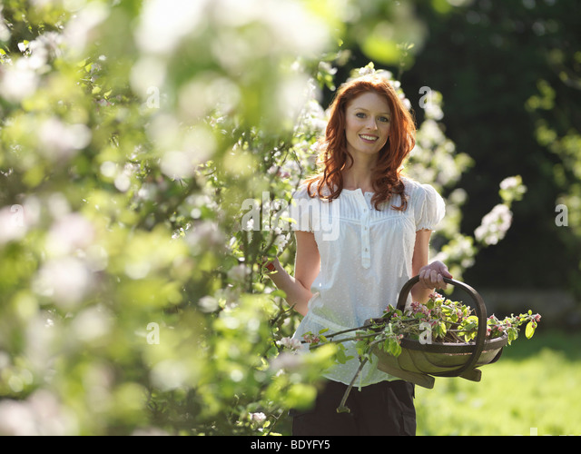 Woman With Apple Blossom In Orchard - Stock Image