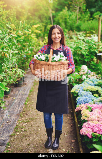 Happy successful young female florist collecting flowers for sale in a large wicker basket standing smiling at the - Stock Image