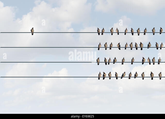 Individuality symbol and independent thinker concept and new leadership concept or individuality as a group of pigeon - Stock Image