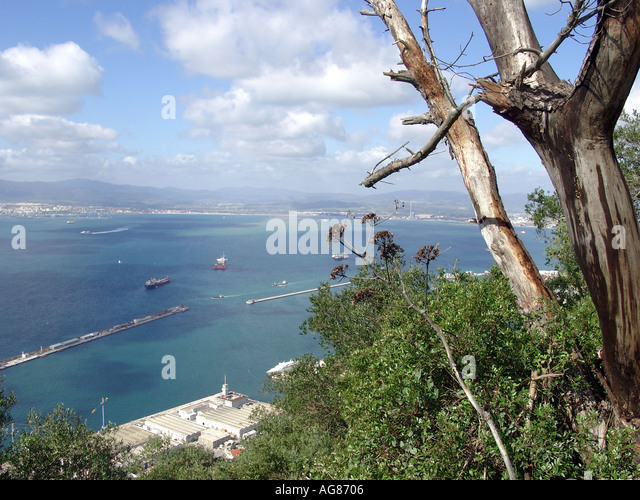 Gibraltar Marina and Harbour Viewed from Upper Rock Nature Reserve - Stock Image