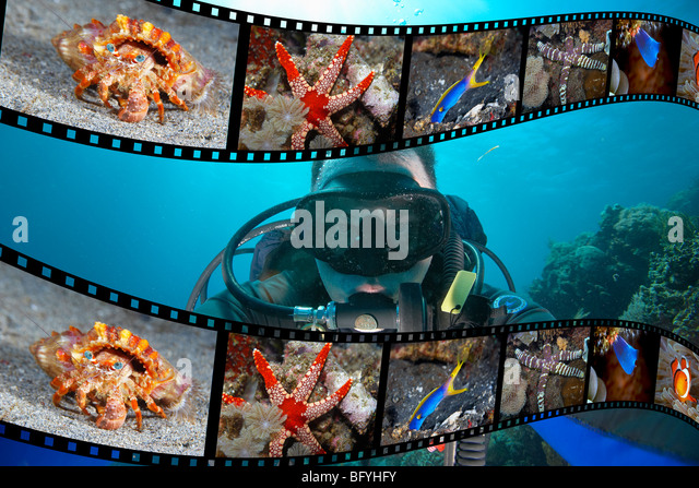 Scuba DIver and Film strip of Underwater Photographs - Stock-Bilder