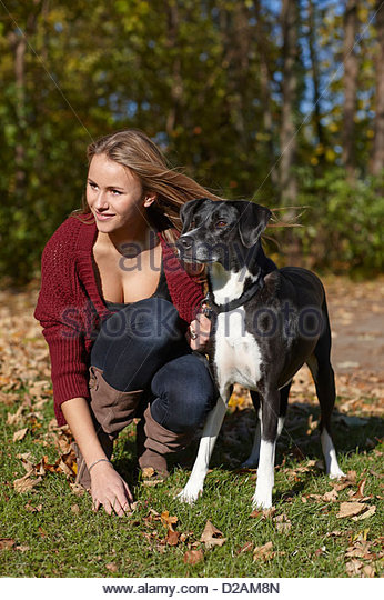 Woman walking dog in autumn leaves - Stock Image