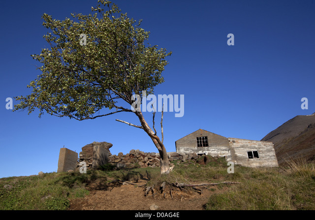 ABANDONED FARMHOUSE DESTROYED BY THE VIOLENT WINDS NORTHERN ICELAND EUROPE - Stock Image