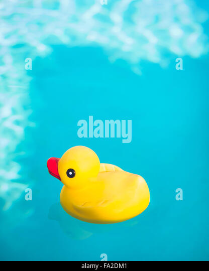 Rubber Duck floating in deep blue water. - Stock Image