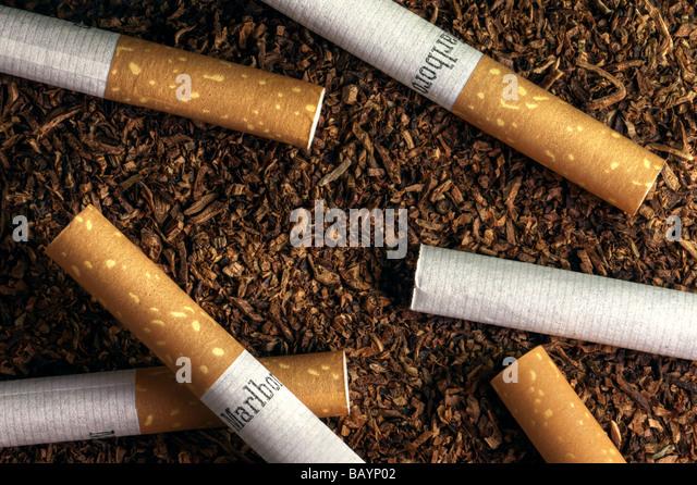 Cigarettes on tobacco - Stock Image