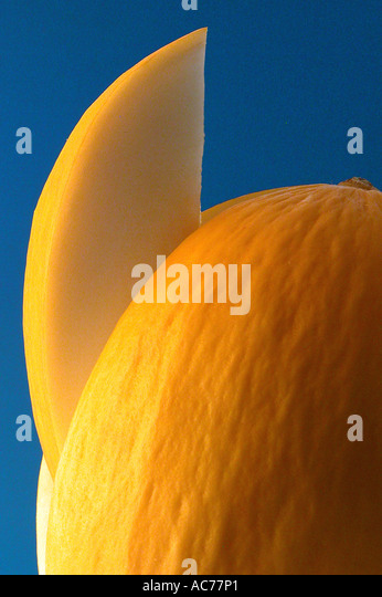 Cut melon - Stock Image