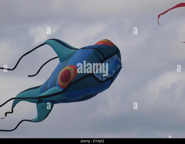 St. Annes, Lancashire, UK, July 2015.  A flying fish kite soars over beach at kite festival weekend held at St. - Stock Image