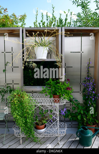The Dillon Garden Dublin Ireland patio area potted plant contrasting flower colour garden plant combination - Stock Image