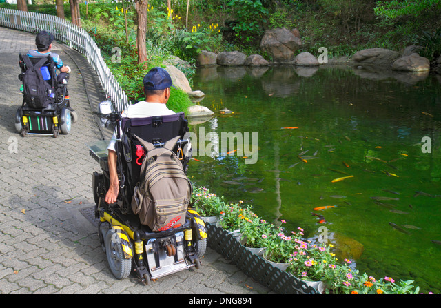 Hong Kong China Island Central Hong Kong Park landscape trees pond Asian man electric wheelchair disabled handicapped - Stock Image