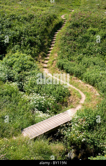 Wooden plank bridge and steps on the South West Coast Path near Hartland Quay in Devon - Stock Image
