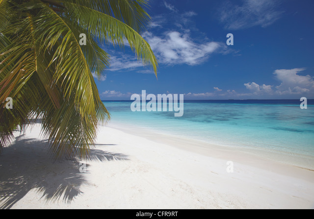 Empty beach on tropical island, Maldives, Indian Ocean, Asia - Stock Image